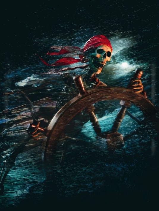 """Poster alternativo de la película """"Piratas del Caribe"""""""
